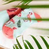 New is coming! 🙌🏻 . . . #skarpetki #moresocks #more #socks #new #mismatched #mismatchedsocks #flaming #flamingo #logo #newiscoming #spring #wiosna #nowości
